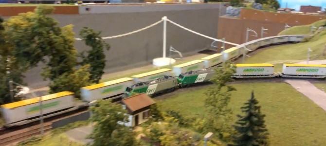 Ambrogio train 1