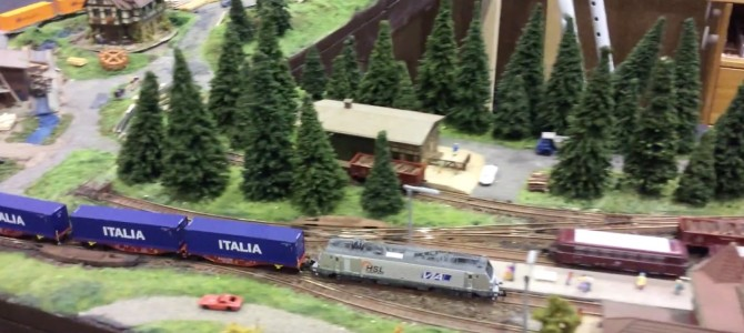 HSL VIA container train 2