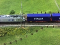 Rocky-Rail HSL VIA RR037025 + containertrain 1