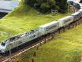 Rocky-Rail HSL VIA RR037025 + containertrain 3